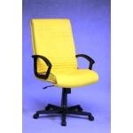 Yubi Director Chair - UB 1008