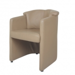Chairman Visitor Chair - Arena