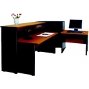 Grand Receptionist - Receptionist 1