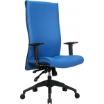 Unistar Director Chair U-972